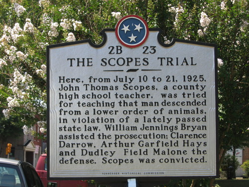scopes monkey trial self educated american scopes monkey trial